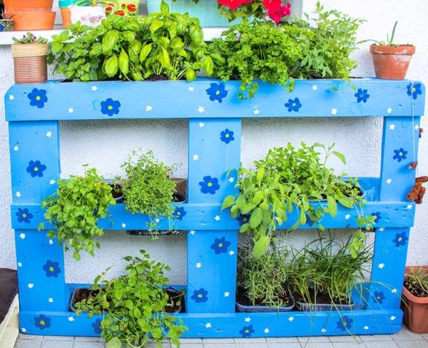 upcycling kr uterbeet aus palette handmade kultur. Black Bedroom Furniture Sets. Home Design Ideas