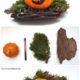 Halloween Deko aus dem Wald