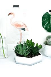 Upcycling Projekt: Mini Sukkulenten Garten