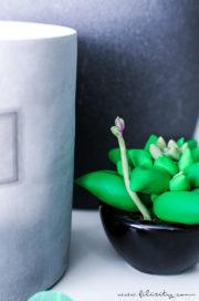 Sukkulenten modellieren aus Kaltporzellan oder Fimo