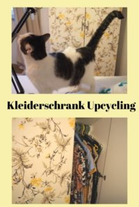 Kleiderschrank Upcycling