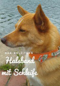 Anleitung: Hundehalsband mit Schleife