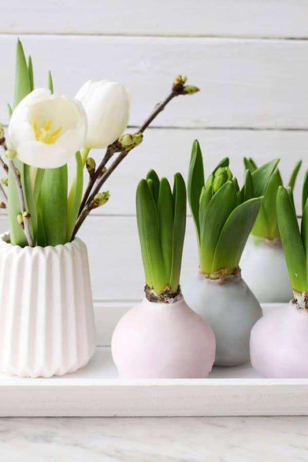 diy hyazinthen in wachs fr hlingsdeko in pastell handmade kultur. Black Bedroom Furniture Sets. Home Design Ideas