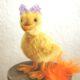 Eine kleine Ente nähen