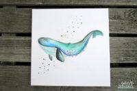 mein Blauwal