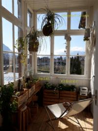 Urban Gardening auf unserer Veranda