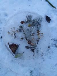 Winterkunst