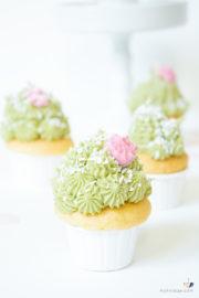 Kaktus Cupcakes mit Matcha Frosting backen + Videotutorial