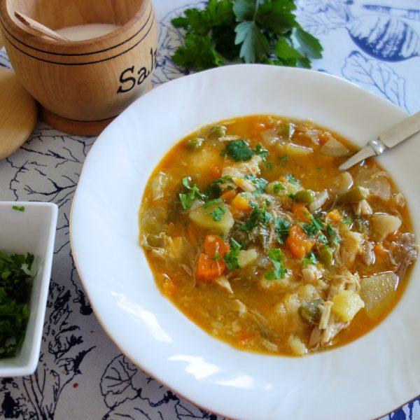 Frühlingseintopf - leckere Suppe mit Hühnerfleisch und frischem Gemüse