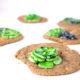 White Chocolate Chip Sukkulenten Cookies | Rezept mit Video