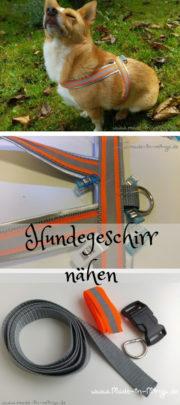 kostenlose Anleitung: Hundegeschirr nähen