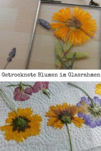 Blumen pressen für die Herbst-Dekoration
