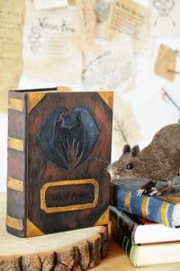 DIY Zauberbuch/Buch der Schatten