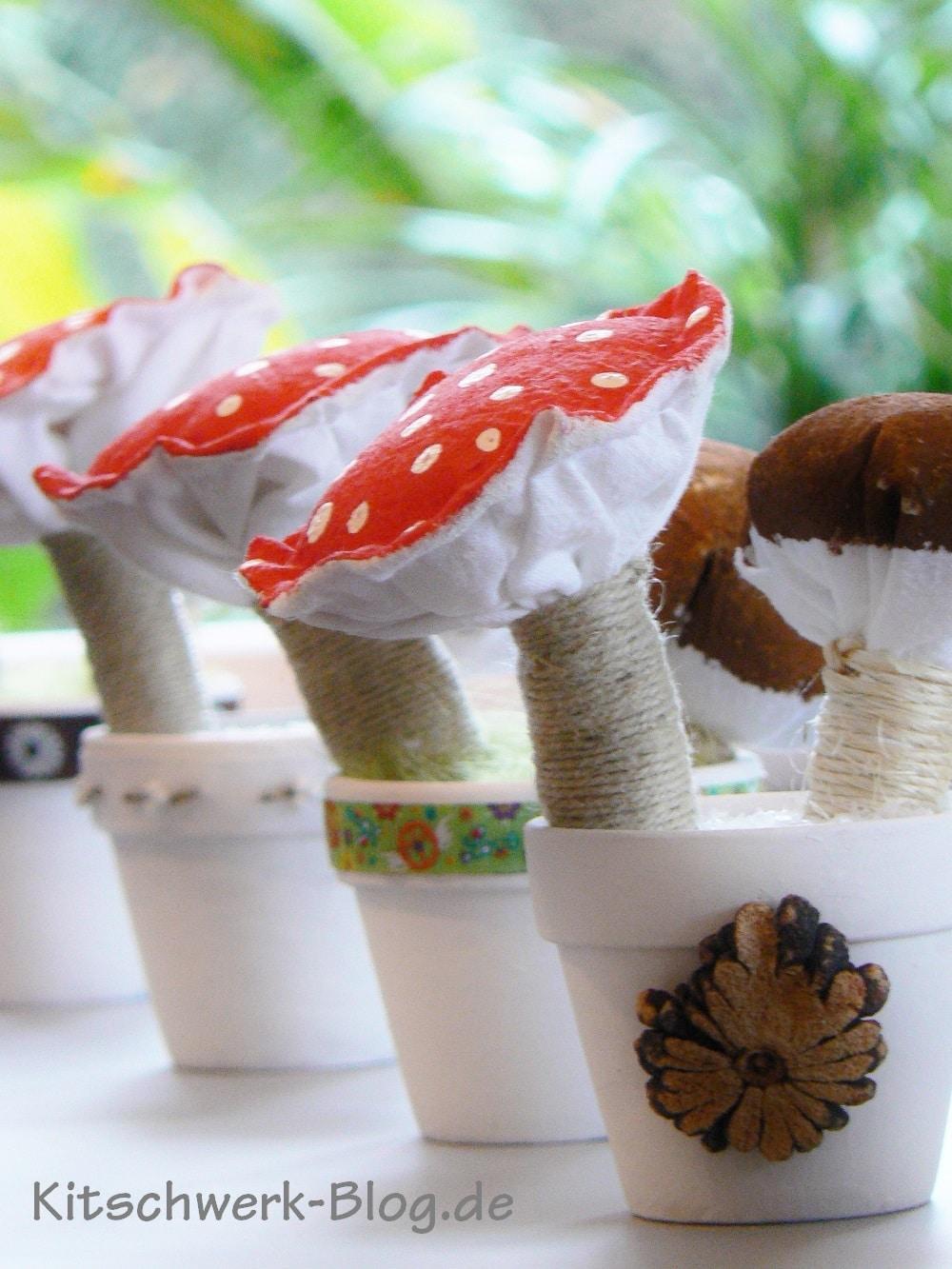 Diy Pilze Handmade Kultur