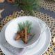 Tischdeko und Baumschmuck aus Zimtstangen