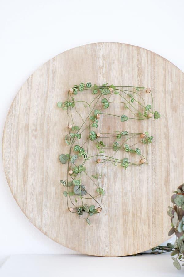 DIY Geschenk zum Valentinstag für Pflanzenfreunde