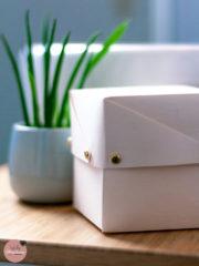 Box Caja