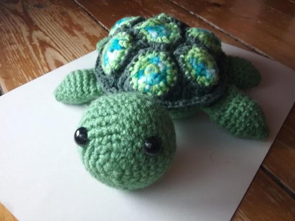 Schildkröte Alwi