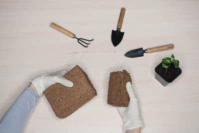 Kokoserde selbst herstellen
