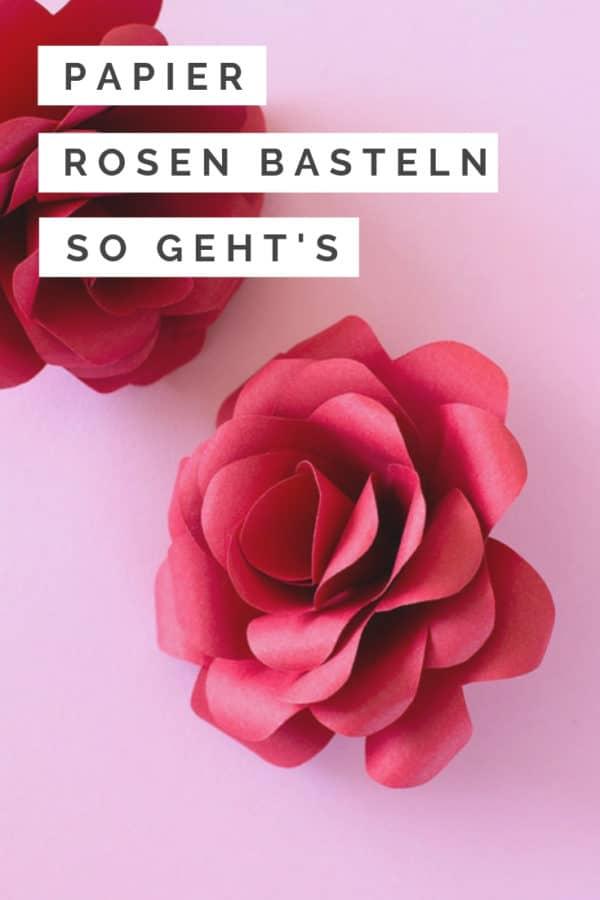 Rosen selber machen