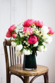 Pfingstrosen: jede Blüte ein Superstar!