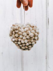 DIY Herzanhänger aus Weidenkätzchen