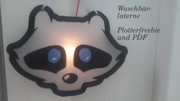 Laterne basteln - Waschbär