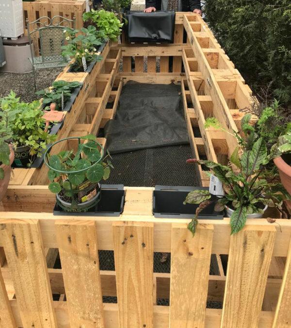 Gestalte deinen eigenen DIY Garten. Hier kommen die Tipps!